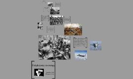 Copy of Wojna i konwencjonalne środki rażenia