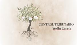 CONTROL TRIBUTARIO