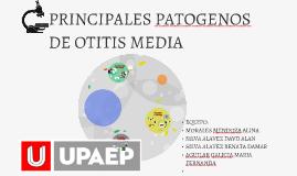PRINCIPALES PATOGENOS DE OTITIS MEDIA