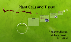 Plant Cells and Tissue