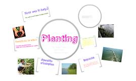 Planting Erosion