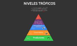 Copy of NIVELES TROFICOS