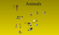 Harold Animals