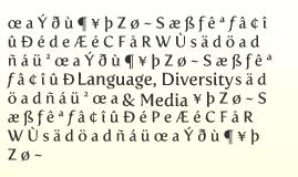 Language Diversity & Media