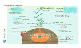 aqua en plantas