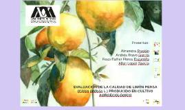 EVALUACIÓN DE LA CALIDAD DE LIMÓN PERSA (Citrus latifolia L.