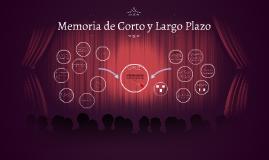 Memoria de Corto y Largo Plazo