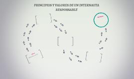 PRINCIPIOS Y VALORES DE UN INTERNAUTA RESPONSABLE