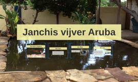 Janchi's vijver Aruba
