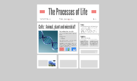 The Processes of Life