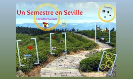 Un Semestre en Seville