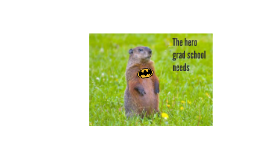 The hero gradschool needs