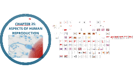 AL Biology Unit 25 Aspects of human reproduction