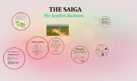 THE SAIGA