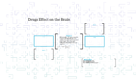 Drugs Effect on the Brain