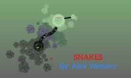 Copy of Snakes SWJCS