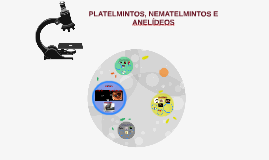 Copy of PLATELMINTOS, NEMATELMINTOS E ANELÍDEOS