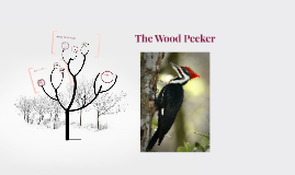 The Wood Pecker