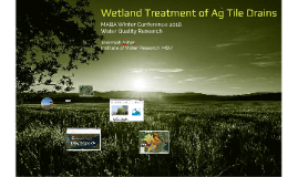 Wetland Treatment of Ag Tile Drains