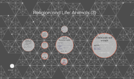 Religion and Life: Animals (3) (and Alevel)