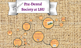Pre-Dental Society at LSU
