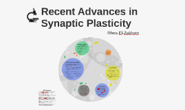 Recent Advances in Synaptic Plasticity