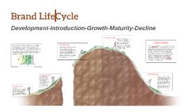 Brand Life Cycle