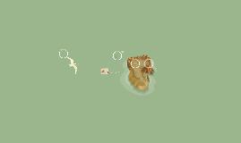 triton vientre de