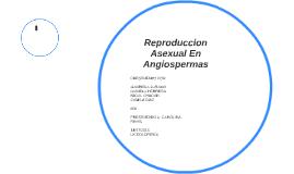Los gimnospermas reproduccion asexual en