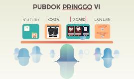 Copy of PUBDOK PRINGGO VI