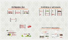 Copy of Copy of 1. INTRODUÇÃO