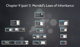 Copy of Chapter 9 (part 1): Mendel's Laws of Inheritance