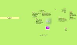 Vision Outline 2014-15