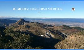 Copy of Copy of Copy of Copy of MEMORIA PUESTOS TRABAJO