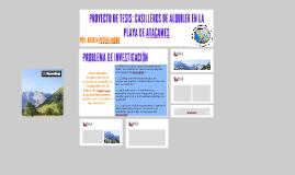PROYECTO DE TESIS: CASILLEROS DE ALQUILER EN LA PLAYA DE ATA