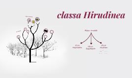 classa Hirudinea