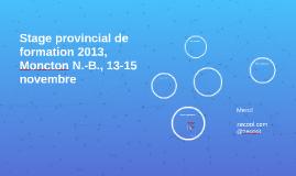 Stage provincial de formation 2013, Moncton N.-B., 13-15 nov