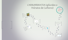 Copy of CARBOHIDRATOS (GLUCIDOS O HIDRATOS DE CARBONO)