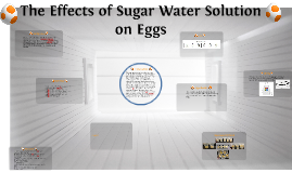 The Effects of Sugar Water Solution on Eggs