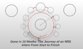 Gone in 10 Weeks: The Journey of an NRS Intern From Start to Finish