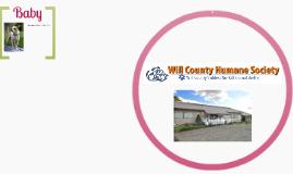 Will County Humane Society.