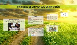 VIABILIDAD DE UN PROYECTO DE INVERSIÓN