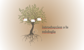 introduccion a la miologia