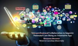 Interprofessional Collaboration to Improve Postnatal Care Us