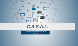 Copy of C.A.S.A.L presentacion
