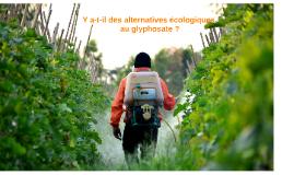 Il y a-t-il des alternatives écologiques au Glyphosate comme