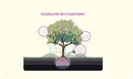 Copy of Natutaleza de la Auditoria