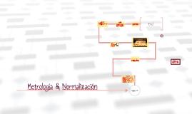 Metrologia & Normalizaci