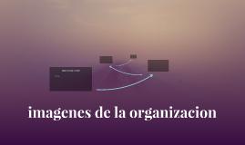 imagenes de la organizacion