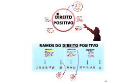 Direito Positivo - Introdução